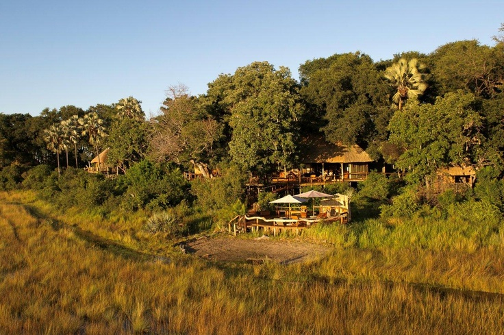 A view with a pool! Kwetsani Camp in the Jao Concession of the Okavango Delta, Botswana