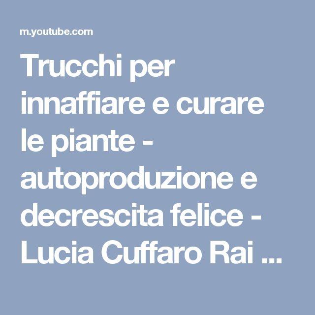 Trucchi per innaffiare e curare le piante - autoproduzione e decrescita felice - Lucia Cuffaro Rai 1 - YouTube
