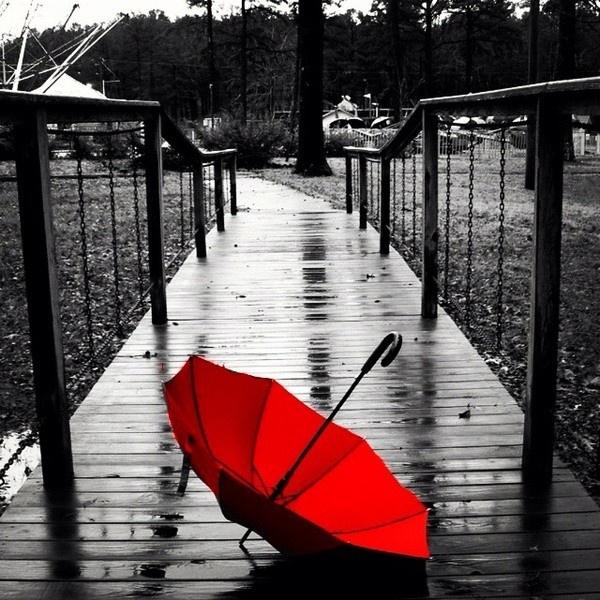 Random Photography ❤ liked on Polyvore
