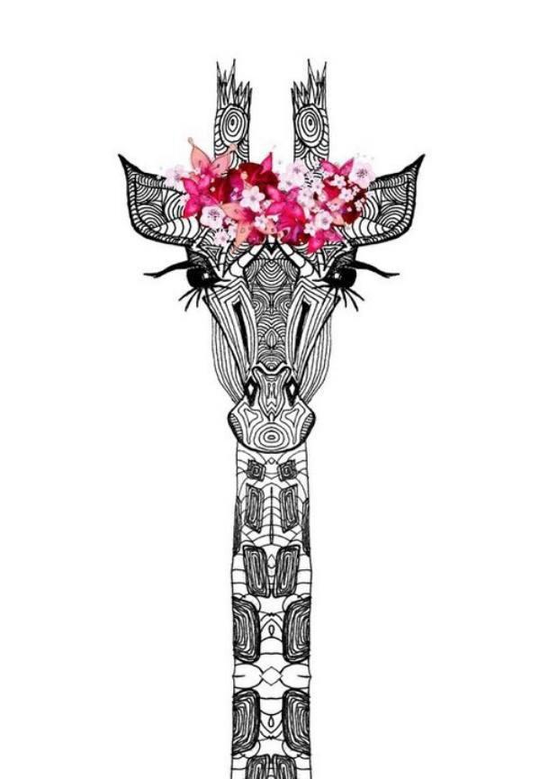 fleur de giraffe