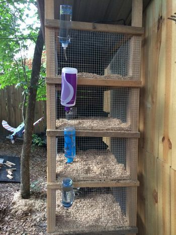 This looks like a MUCH easier way to refill the water in the #quail pens outside. Note to Novio....