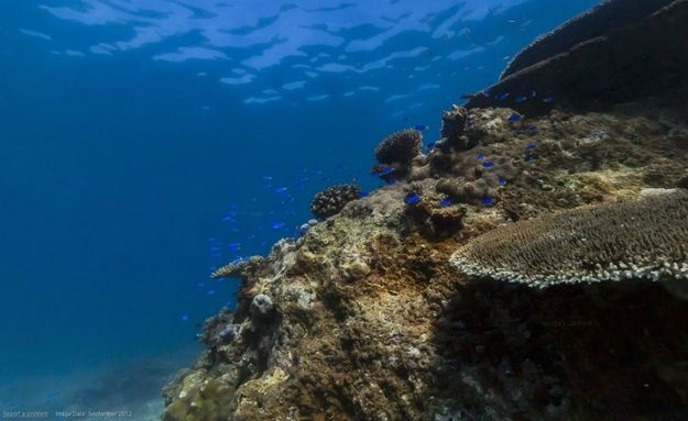 Localizada ao nordeste da Austrália, a grande barreira de corais é um ótimo lugar para tirar fotos: http://abr.io/5CYC
