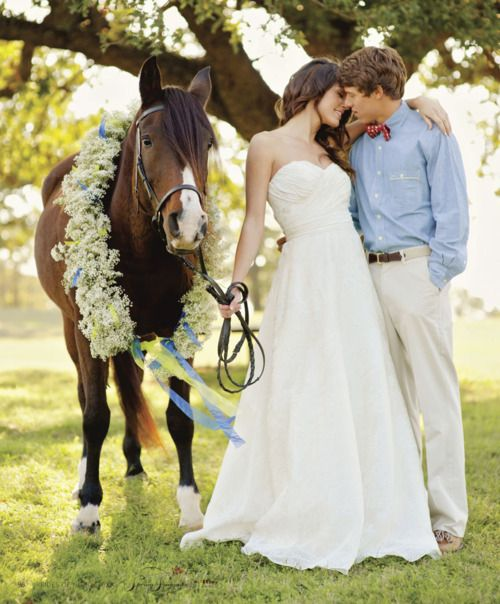 horse with bride and groom wedding pictures