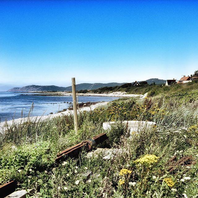 Blå himmel. Blått hav. 26 grader i luften. Så här ser det ut i #Nyhamnsläge. Blir det ett kvällsdopp ikväll? #Höganäs  #kullen #kullaberg #kullahalvön #bestplace #placetobe #skåne #sverige #sweden #detherersverige #visitsweden #visithoganas #swedishmoments #kvällsdopp #hav #strand #sea #beach