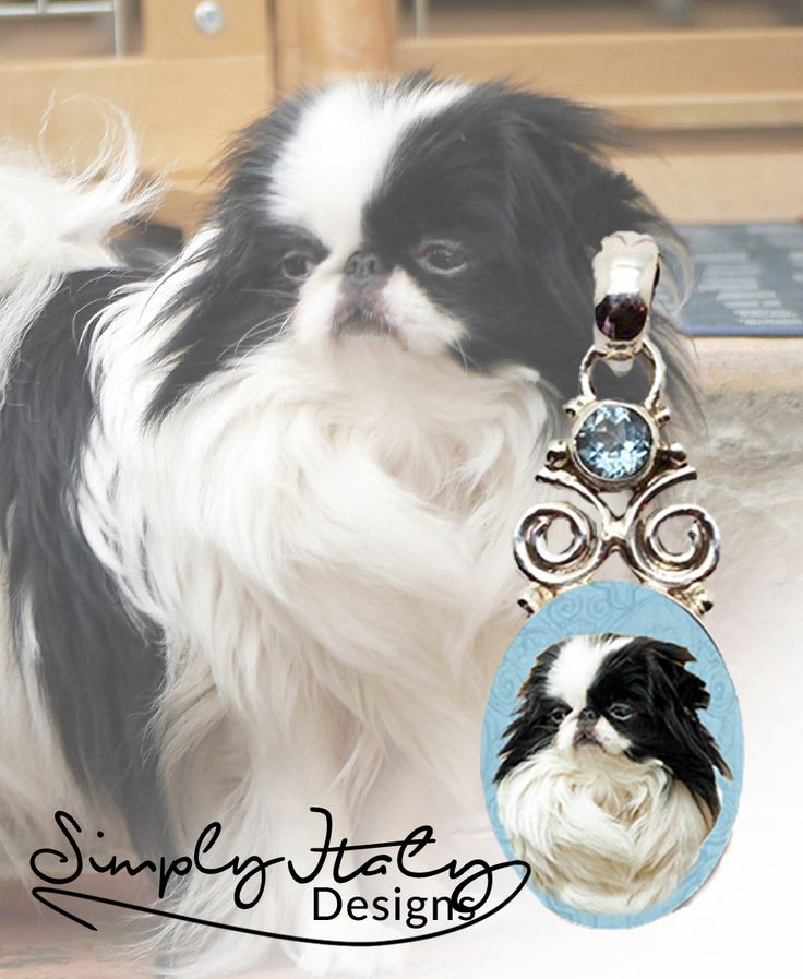 I have many designs of photo keepsake necklaces that you can choose the gemstone you want.  Choose your favorite color or match your dogs colors :) www.simplyitalydesigns.com