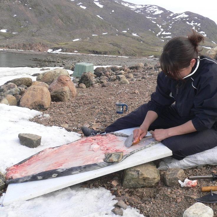 nunavut fishing trips