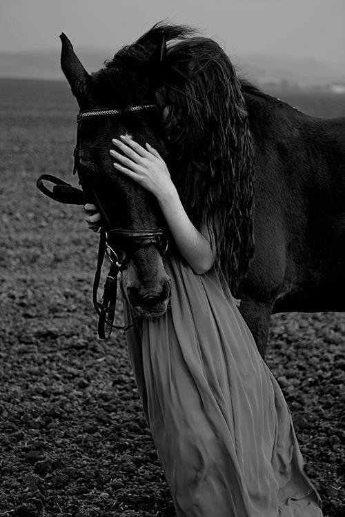 Cheveux et cheval