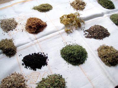 231 Best Medicinal Herbal Tea Recipes Images On Pinterest