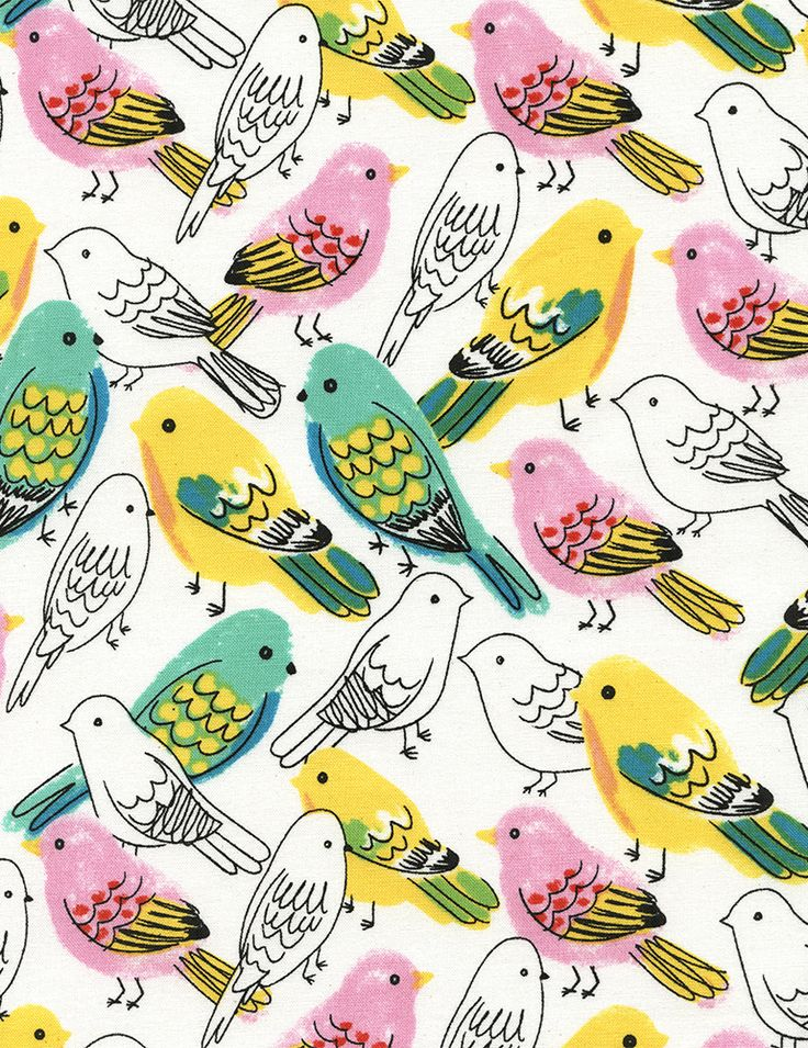 Budgies #pattern #birds #design #illustration #print