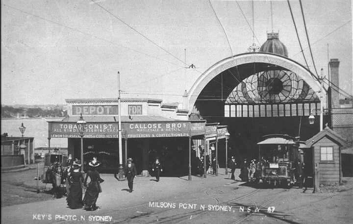 Milsons Point Ferry and Tram Terminal in 1906. State Library of NSW.