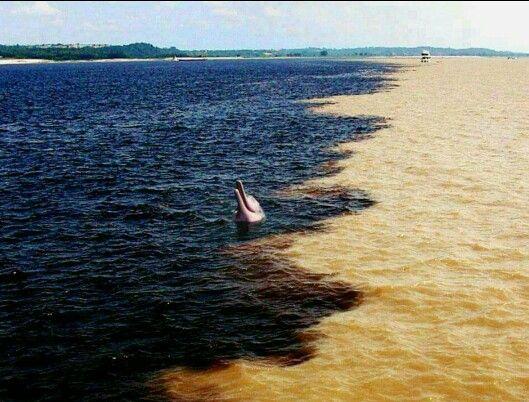 Encontro das Águas/AM