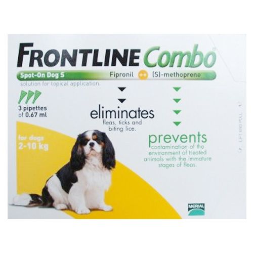 (Combo) for Small Dogs up to 22lbs (Orange)