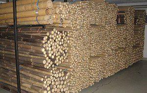 Bambusrohre, Bambusstangen, Bambus für Dekoration und Gartenbau
