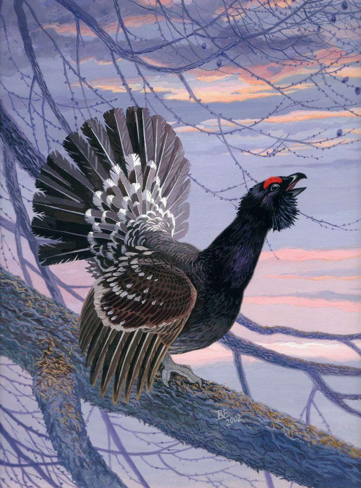 следующие картинки с образом птиц люди надолго запомнят