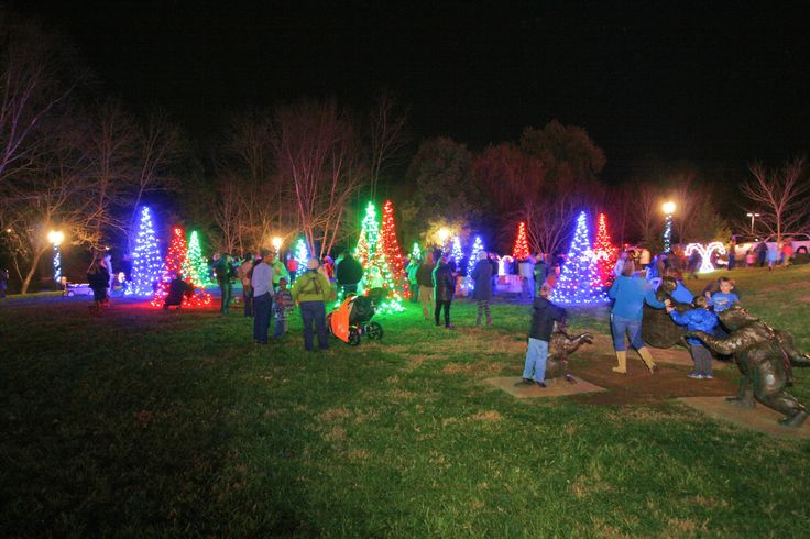 Trees and lights galore at the 2015 Light the Park event