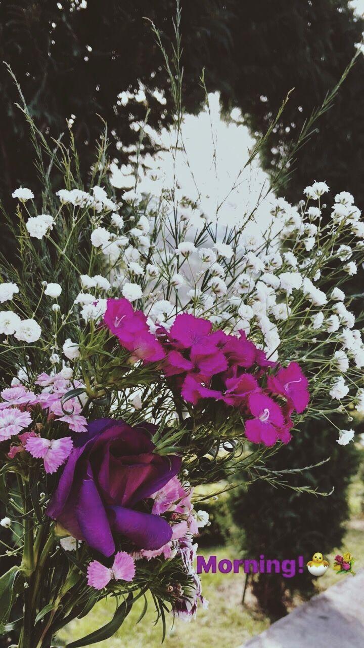 Pin by م on veni vidi vici pinterest seasons four seasons