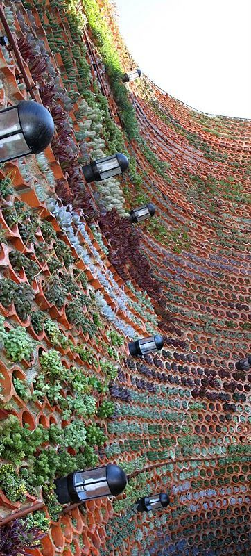 The green wall acts as a sound barrier between the open air disco located in the hotel's central courtyard and the neighboring guest rooms. The rows and rows of ceramic terracotta pots are planted with succulents