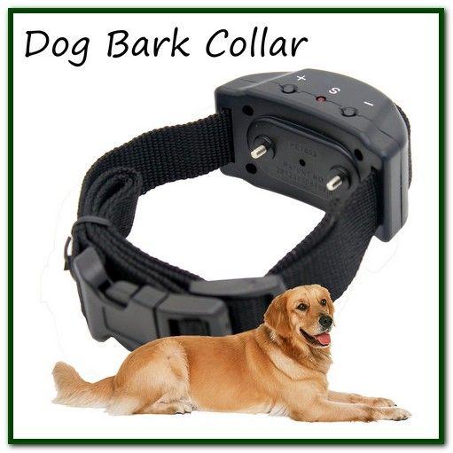 Sportdog Bark Collar Dog Training Pet Trainer Anti Bark Collar