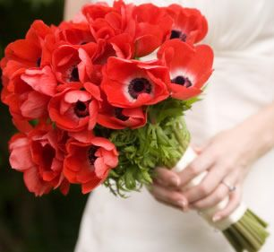 Google Image Result for http://www.bouquetweddingflower.com/wp-content/uploads/2011/03/red-anemone-bouquet.jpg