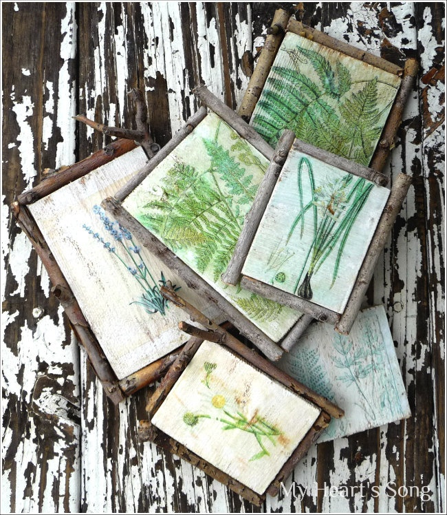 My Heart's Song: Botanicals - A Decoupage Project