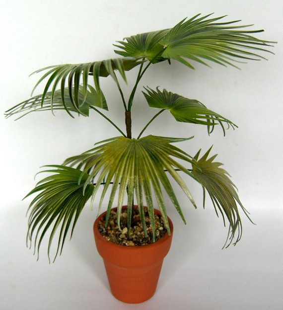 CHINESE FAN PALM in terracotta pot by LadiesMileMiniatures on Etsy