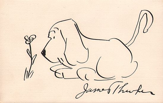 """If I have any beliefs about immortality, it is that certain dogs I have known will go to heaven, and very, very few persons."" -- James Thurber"