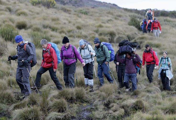 #KilimanjaroClimb might be demanding a lot of training and types of equipment. Know more @ https://www.northernmasailandsafaris.com/mountain-climbing/