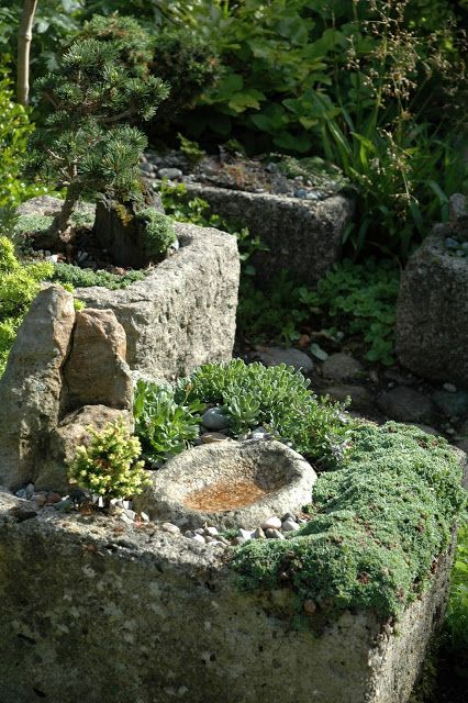 """Trough garden - I like the idea of a small """"pool"""" in the trough for wildlife"""