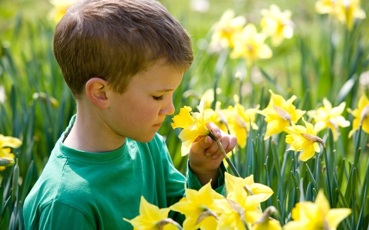 Youngsters' reactions to different smells may help test for autism, according   to new research