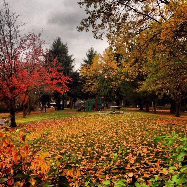 Jantzen Beach Amusement Park In Portland, Oregon Images On Pinterest