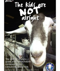 Article: An undercover investigation into the British dairy goat industry reveals shocking death, mutilation and disease.