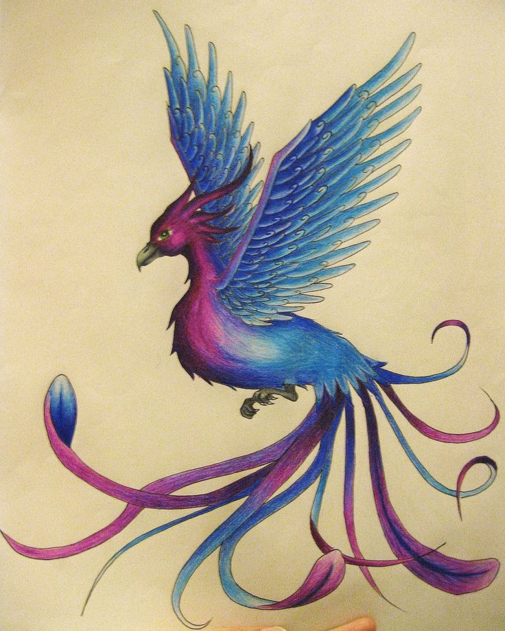 Blue N Purple Phoenix By Xxemobearxx Designs Interfaces Tattoo Design Design 900x1125 Pixel