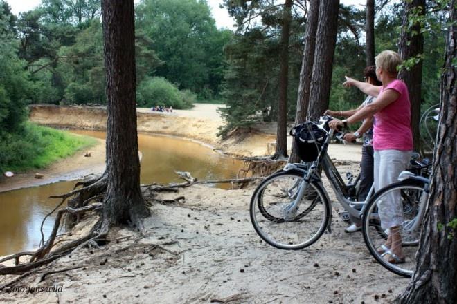 Paviljoen 't Lutterzand ligt aan de rand van het natuurgebied. Door dit prachtige bos lopen verschillende fietsroutes die ons bedrijf passeren.   O.a. fietsknooppuntenroute nr. 61,   Rondom De Lutte (21 km),  Kappelletjestocht (35-59 km),  Kanaaltocht (39 km),  Gildehaus Dinkelroute (41 km),  ANWB Landelijke Fietsroutes (LF 14a/14b).  Deze routes brengen u langs de mooiste plekjes in het Lutterzand. www.lutterzand.nl