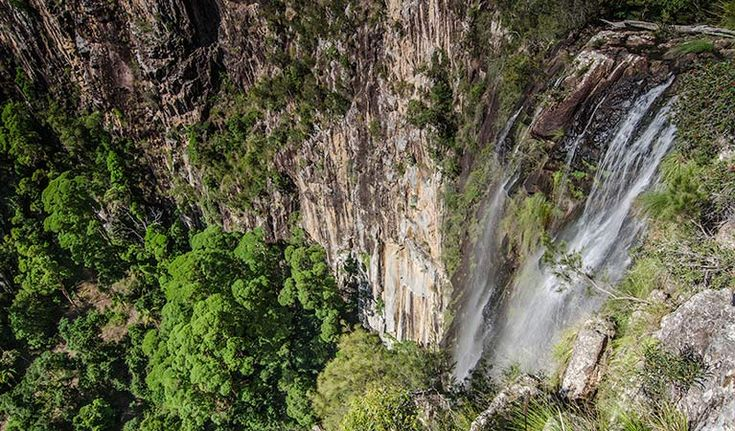 View of Minyon Falls from the lookout. Copyright:John Spencer/OEH