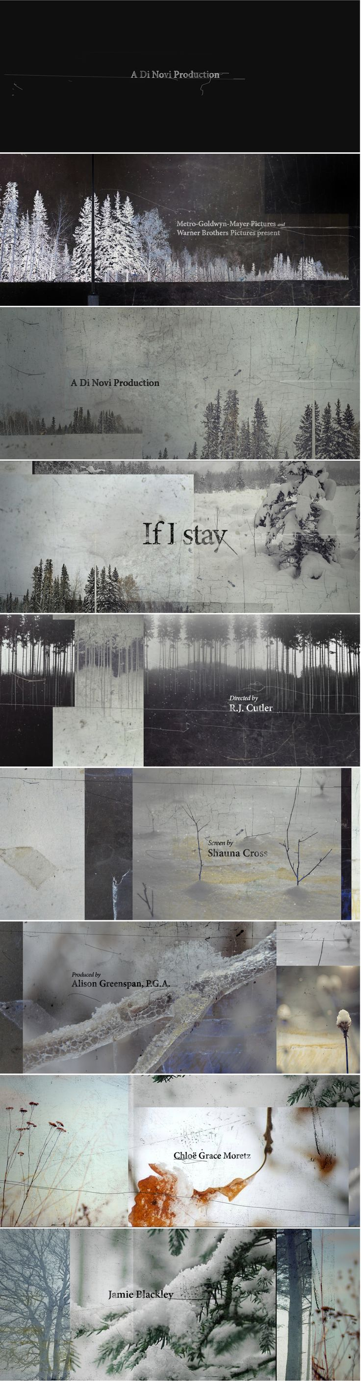If I stay - Hyejung Bae