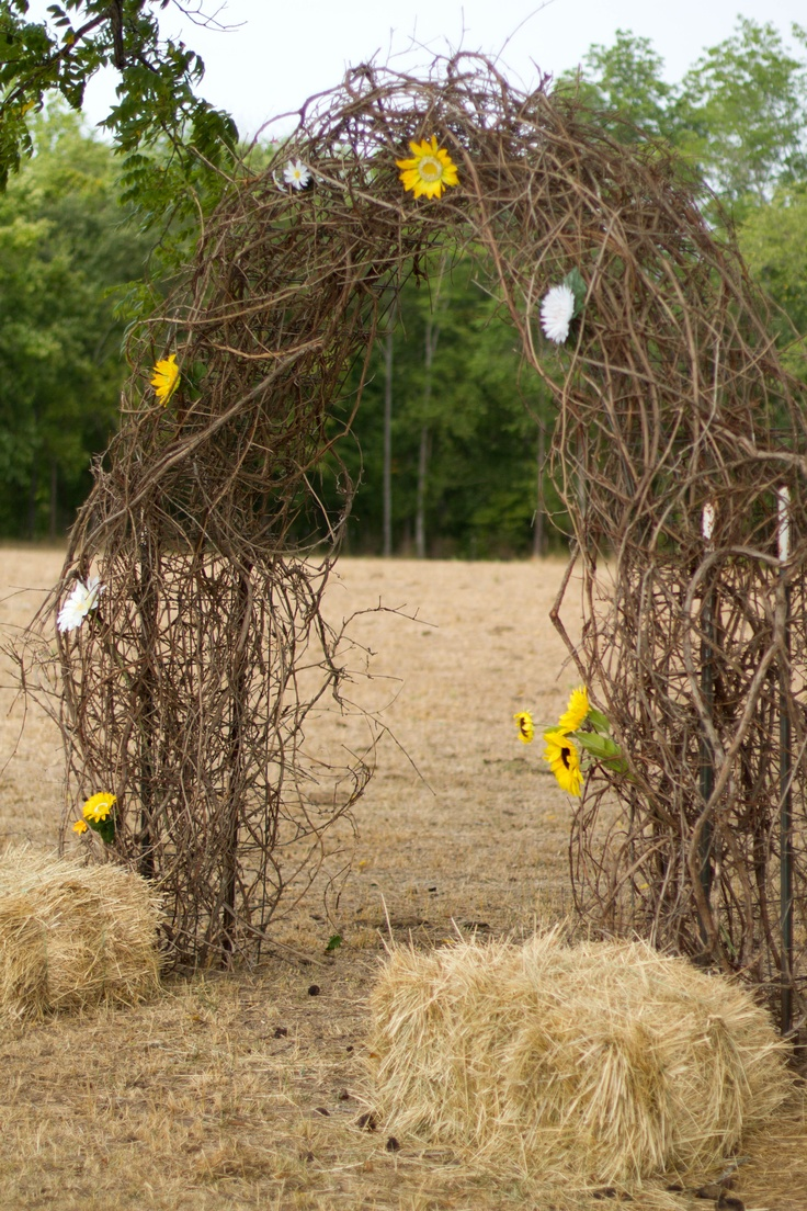 rustic wedding arch made out of grape vine my wedding pinterest rustic wedding arches weddings and wedding