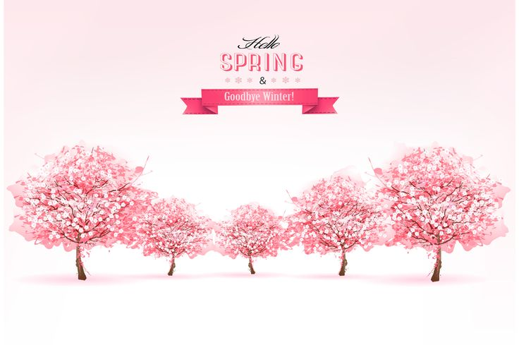 Spring Nature Background With Sakura by ecco on @creativemarket