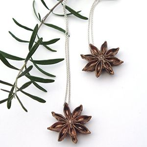 Bronze Anise Star Necklaces - Bronze and Sterling Silver