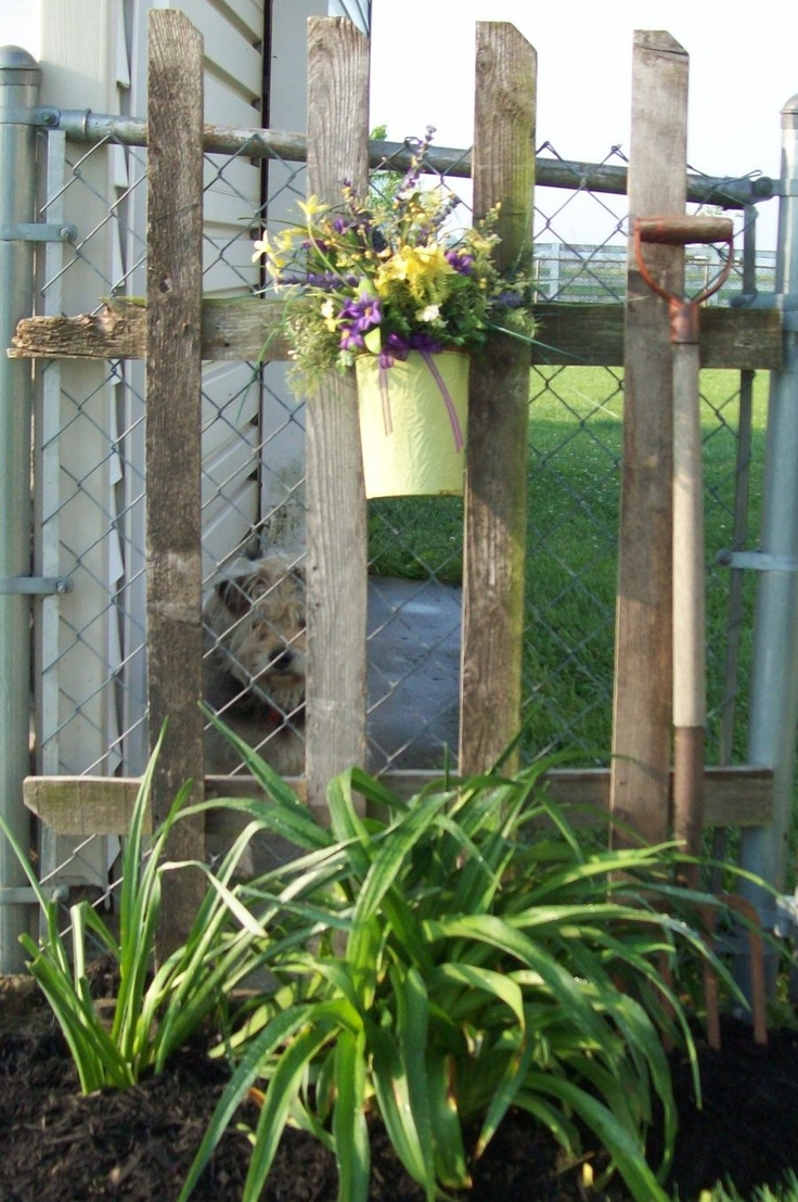 Image detail for -have been out in the yard trying to disguise my chain link fence.