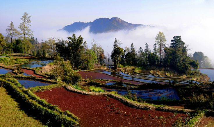 Yuanyang County,Yunnan Province, China, famous for its beautiful and spectacular paddy fields