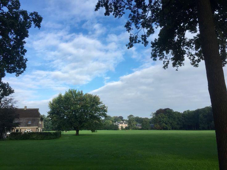 2015-09-13 Een glimp van kasteel Ampsen vanaf de Laan Ampsen