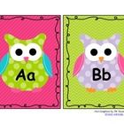 Owl Themed Word Wall Set - Included Fry's 1st 300 sight words with border to match the alphabet set!