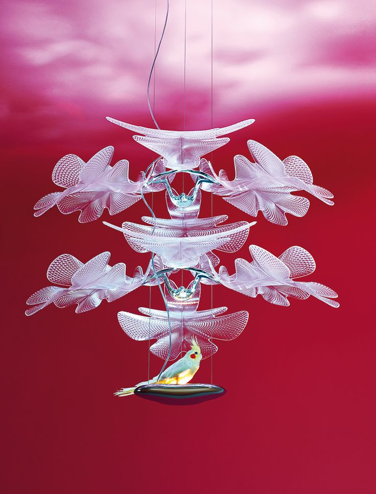 Chlorophilia 2, design by Ross Lovegrove