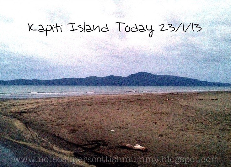 Not So Super Scottish Mummy: Kapiti Island Today 23/1/13