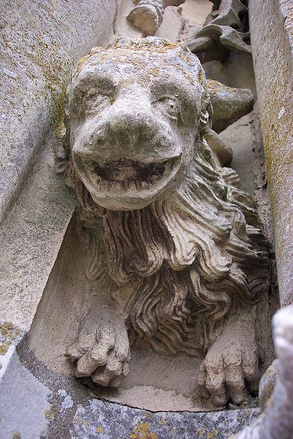 Cathedral Gargoyles | Chartres Cathedral tower gargoyle pup mostly closeup | Flickr - Photo ...