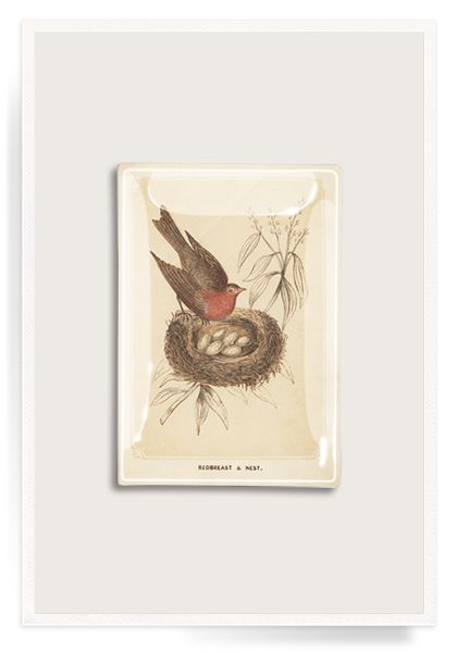 Sweet Swallow #bird Decoupage Glass Tray by Ben's Garden. #bensgarden #decoupage #quotes