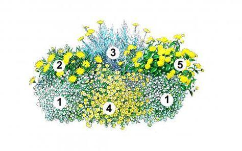 Blumenkasten Idee mit Duftsteinrich, Gazanie, Zwerg-Curry, Zauberglöckchen, Wandelröschen