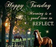 Happy Tuesday, Morning Is A Good Time To Reflect