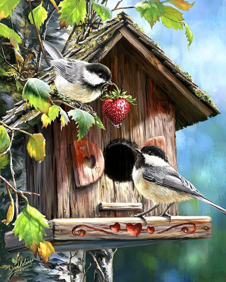 С домика птицы картинки