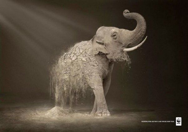 The dark, muted colors in this ad create a somber tone. The light coming from the top left shines down on the part of the elephant that is crumbling. The rest of the animal is shouting in a combination of pride and fear. There is a sense of a losing struggle. The only words are a message stating the fact that magnificent creatures are being destroyed every day. The WWF logo attaches the World Wildlife Fund to this struggle on behalf of these animals.